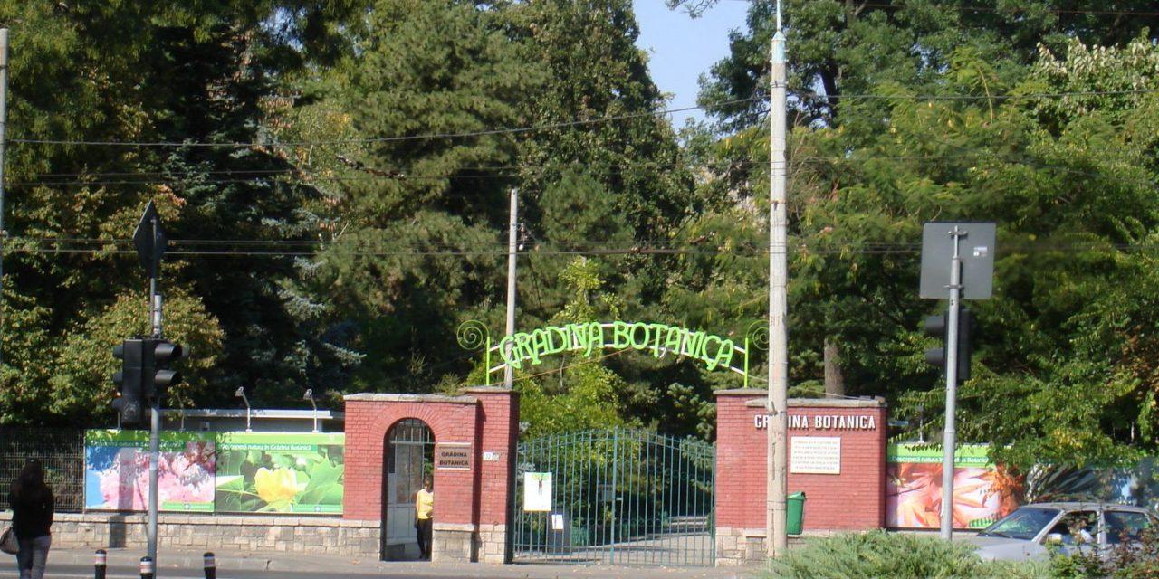 Secom ajută la  amenajarea sectorului de plante medicinale și utile din Grădina Botanică