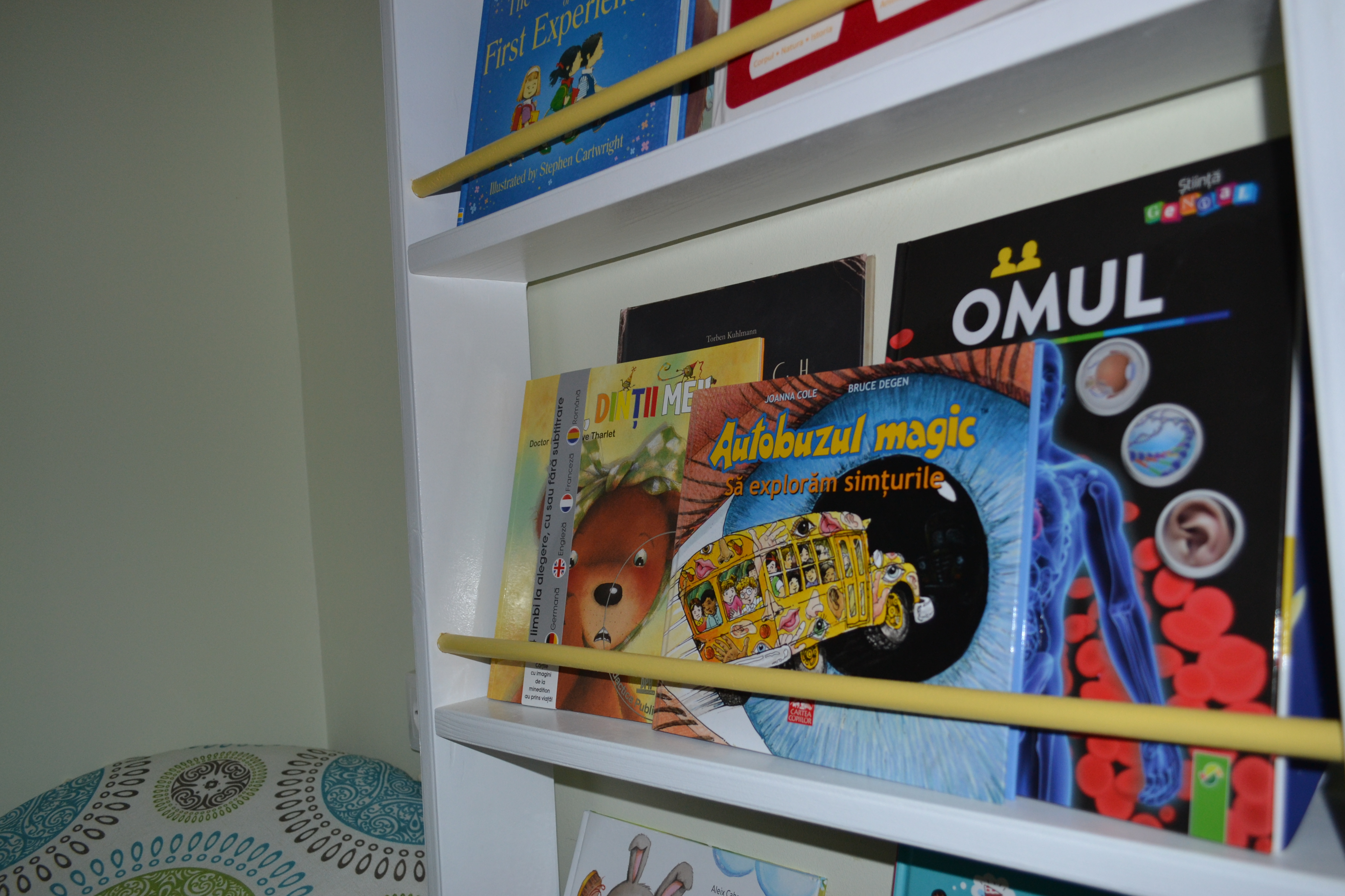 autobuzul magic cartea copiilor